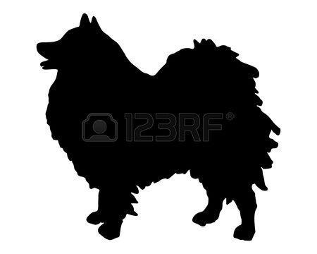 450x360 Keeshond The Black Silhouette Of A German Spitz Puppy Love