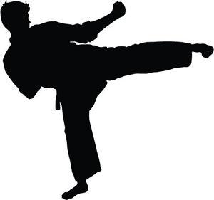 300x281 Karate Kick Silhouette (Rsk) X 6 Car Bumper Vinyl Stickers