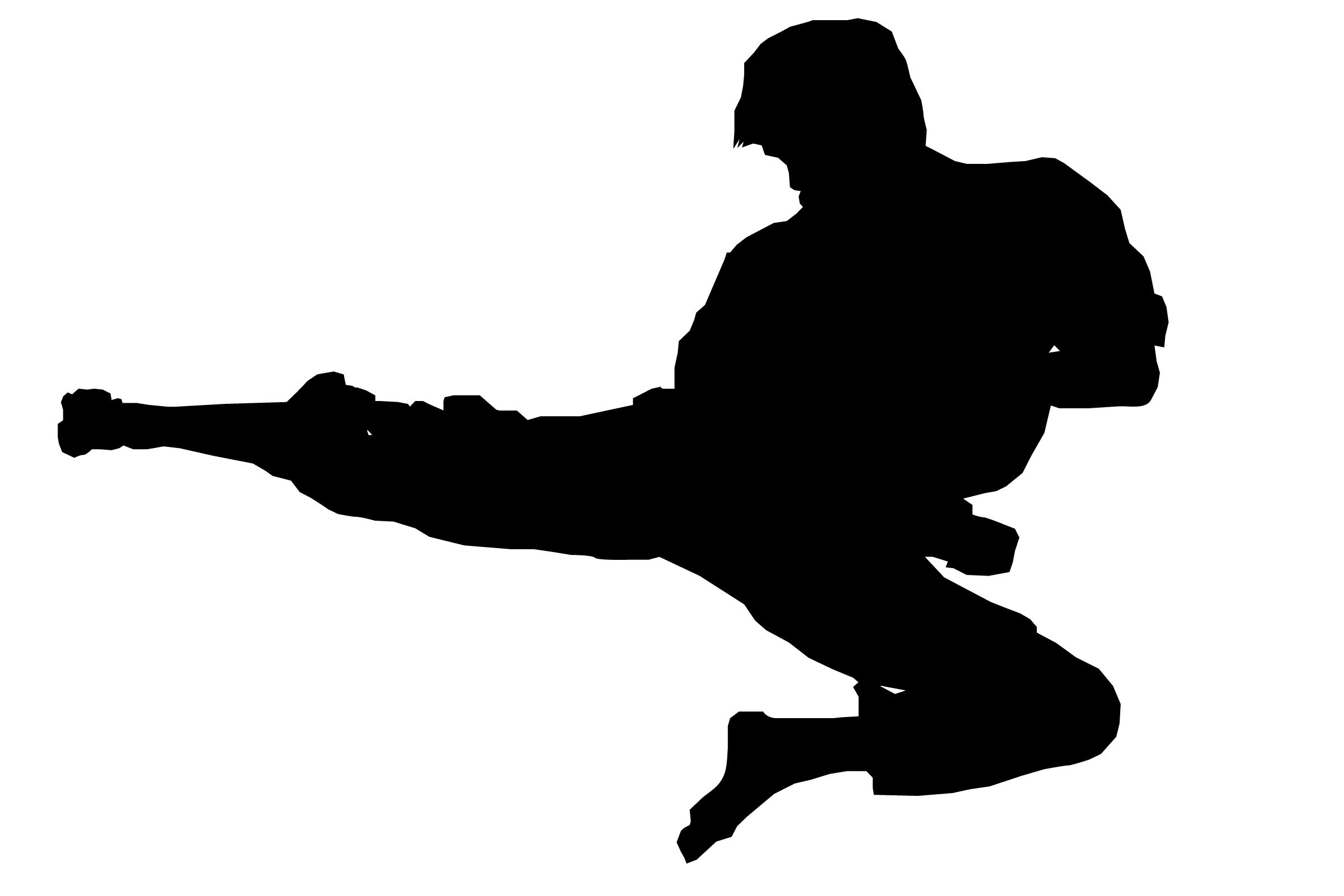 2402x1602 Karate Silhouette Clip Art Karate Demonstration Cricut Ideas