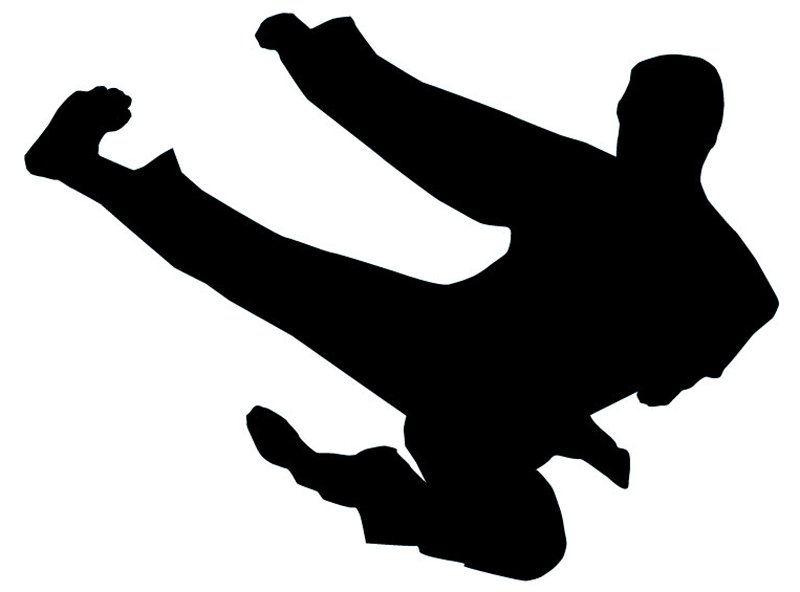 800x592 Ninja Kick Silhouette
