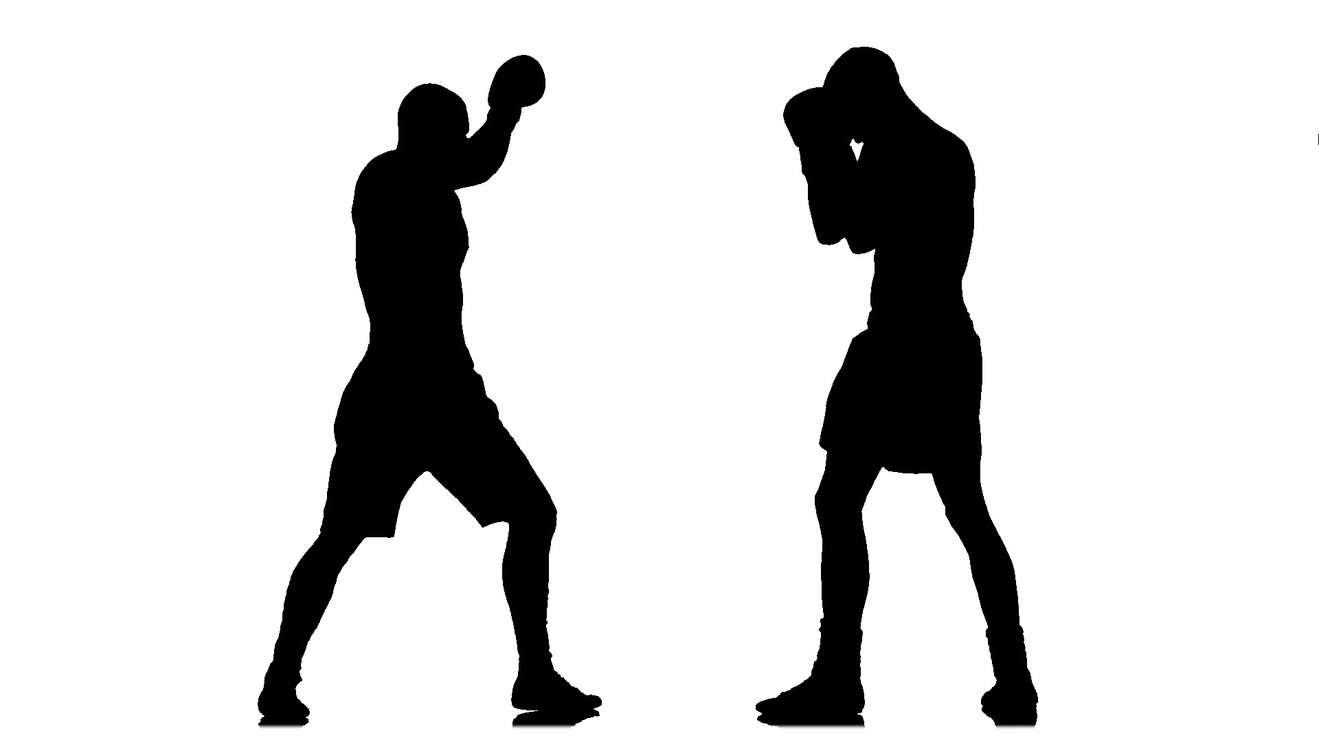 1920x1080 Kickboxing Two Muscular Athletes In Silhouette. Slow Motion ~ Clip