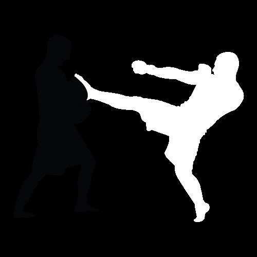 500x500 Martial Arts