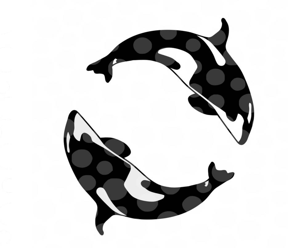 killer whale silhouette at getdrawings com free for personal use