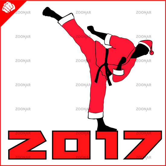 550x550 Photo New Year And Merry Christmas Martial Arts Karate Santa