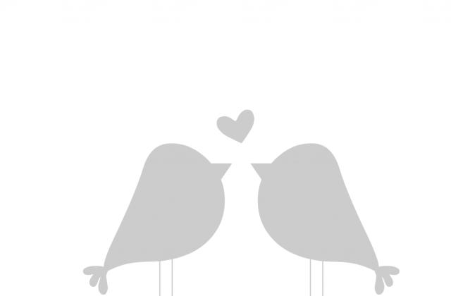 640x420 Tag For Love Bird Silhouette Birds In Tree Bird On Branch Clip