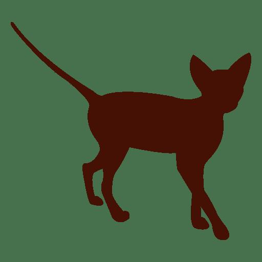512x512 Silhouette Kitten Cat Pet