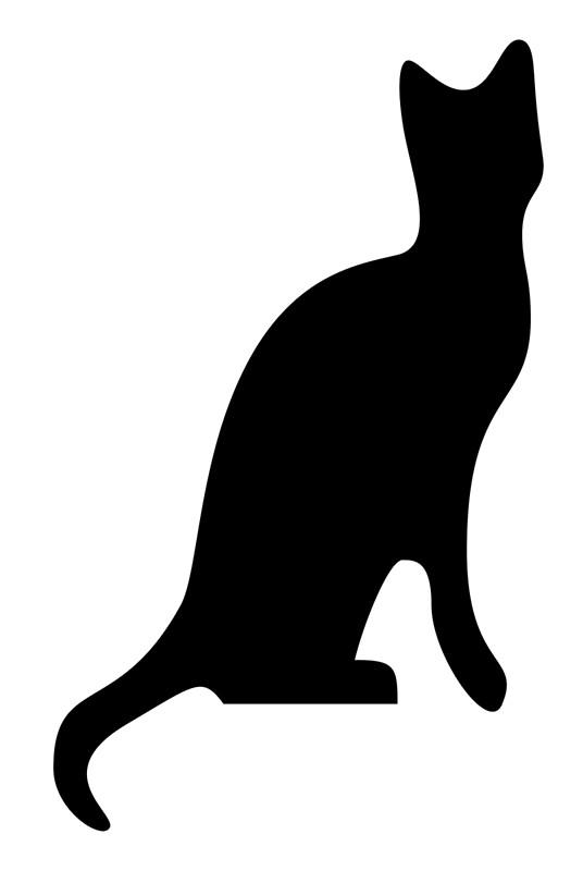 536x800 Cat, Side, Silhouette, Kitten, Pet, Cat, Feline, Puss, Pussy