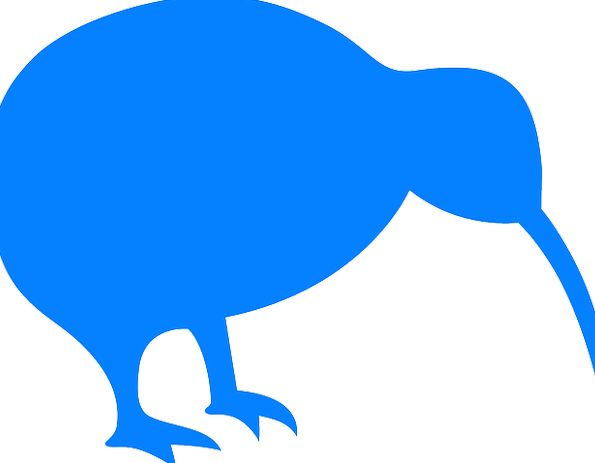595x463 Kiwi, Fowl, Animal, Physical, Bird, Silhouette, Outline, Blue