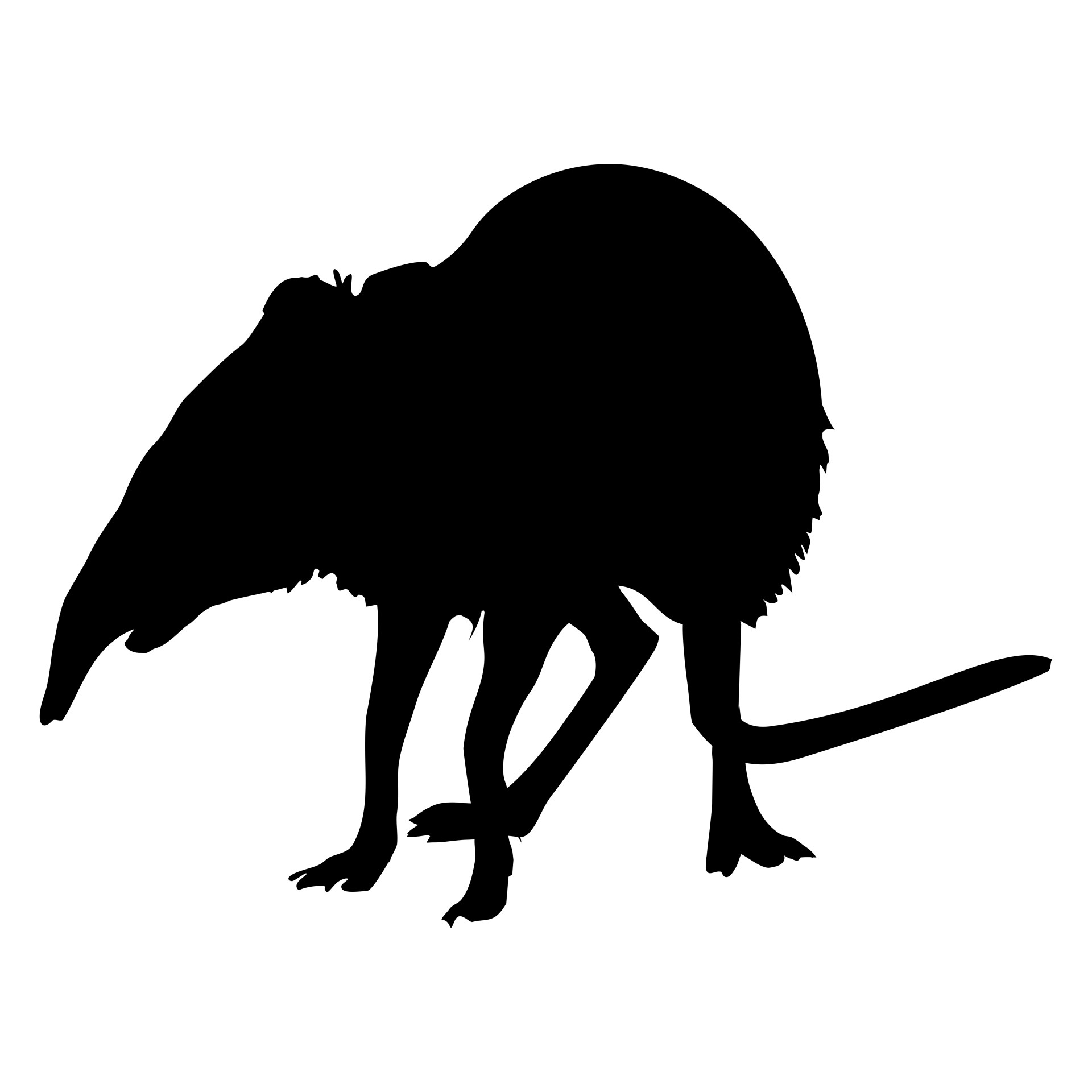 1920x1920 Shrew Silhouette Free Stock Photo