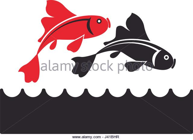 640x465 Koi Fish Stock Vector Images