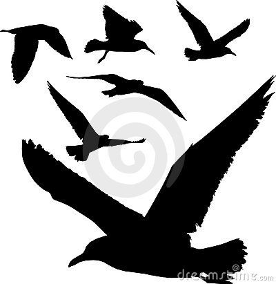 400x411 Silhouettes Of Birds