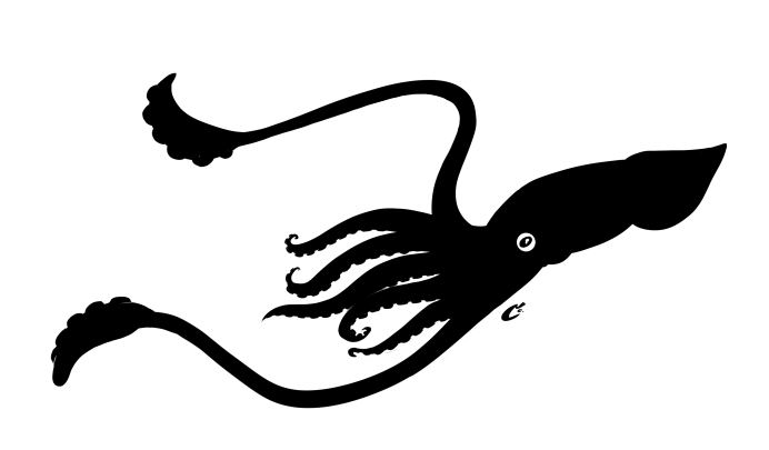 692x405 Squid Silhouette By Shaggy28