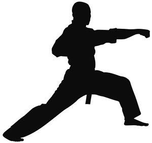 300x283 Nr143)karate Taekwondo Kung Fu Sign Decal Vinyl Sticker Wall
