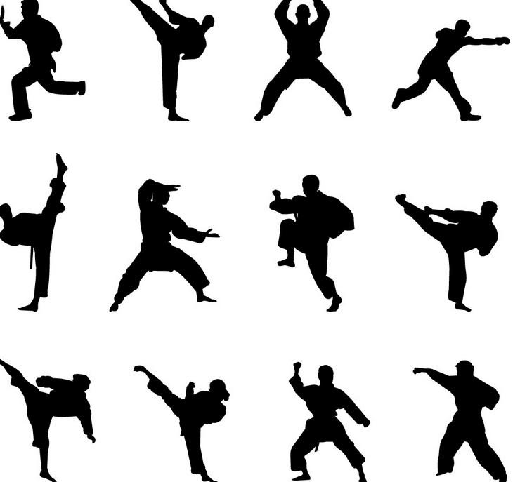 740x687 Poll When You Mention Chinese Kung Fu, Who's The First One You