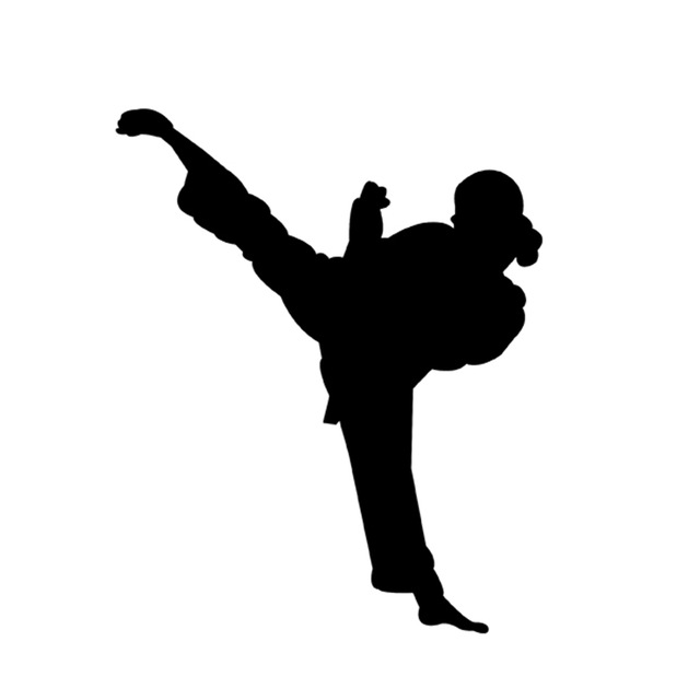 640x640 Chinese Kung Fu Master Legend Women Karate Taekwondo Vinyl Decal