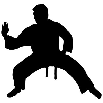 Kung Fu Silhouette