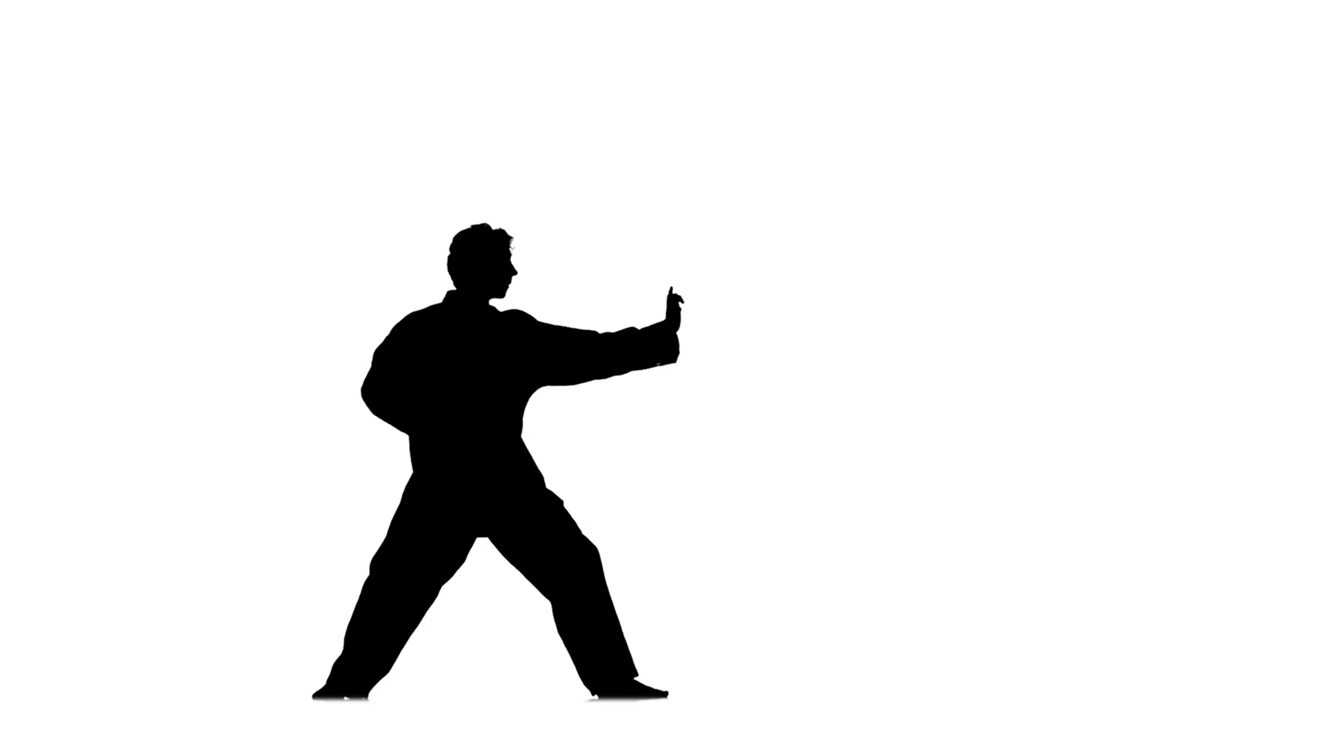 1920x1080 Kung Fu, Karate, Martial Arts, Silhouette, Slow Motion. Kung Fu