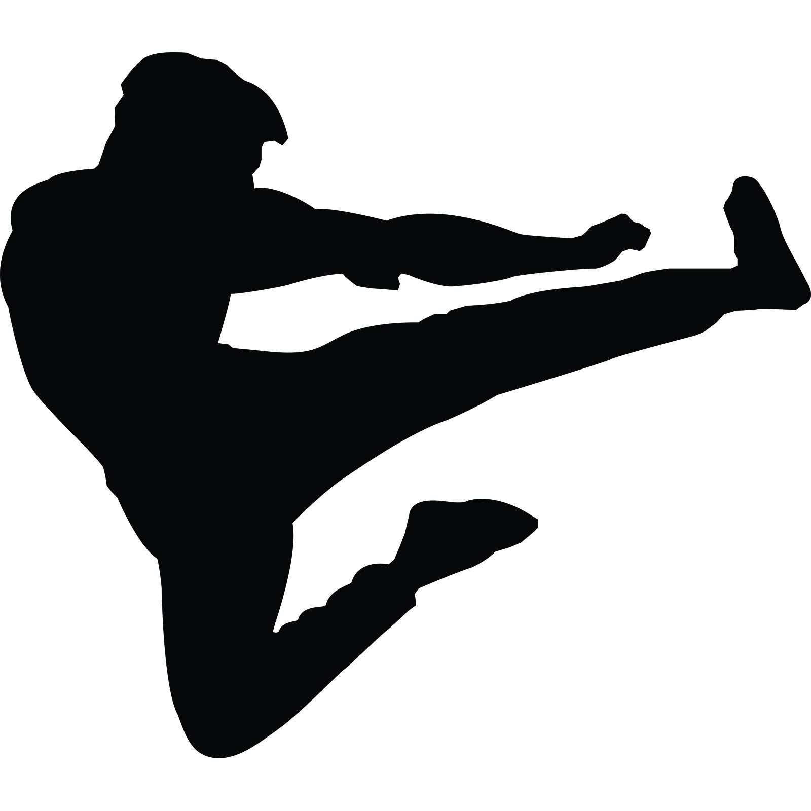1600x1600 Martial Art Silhouette