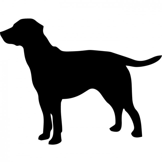650x650 Labrador Clipart Dog Outline