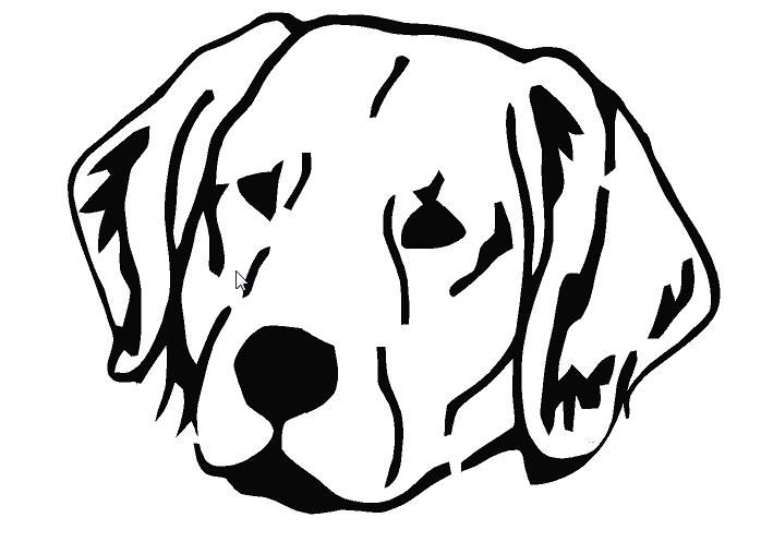 698x497 Golden Retriever Head Silhouette