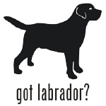 150x150 Labrador Dog Decal Sticker