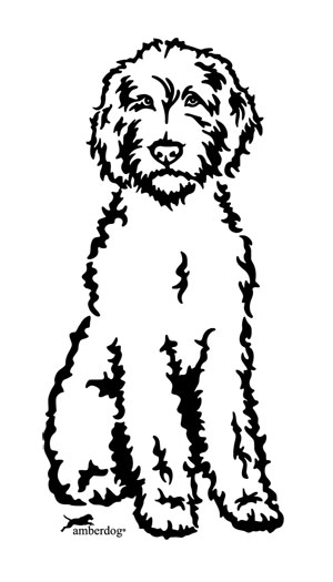 300x525 Labradoodle Drawing