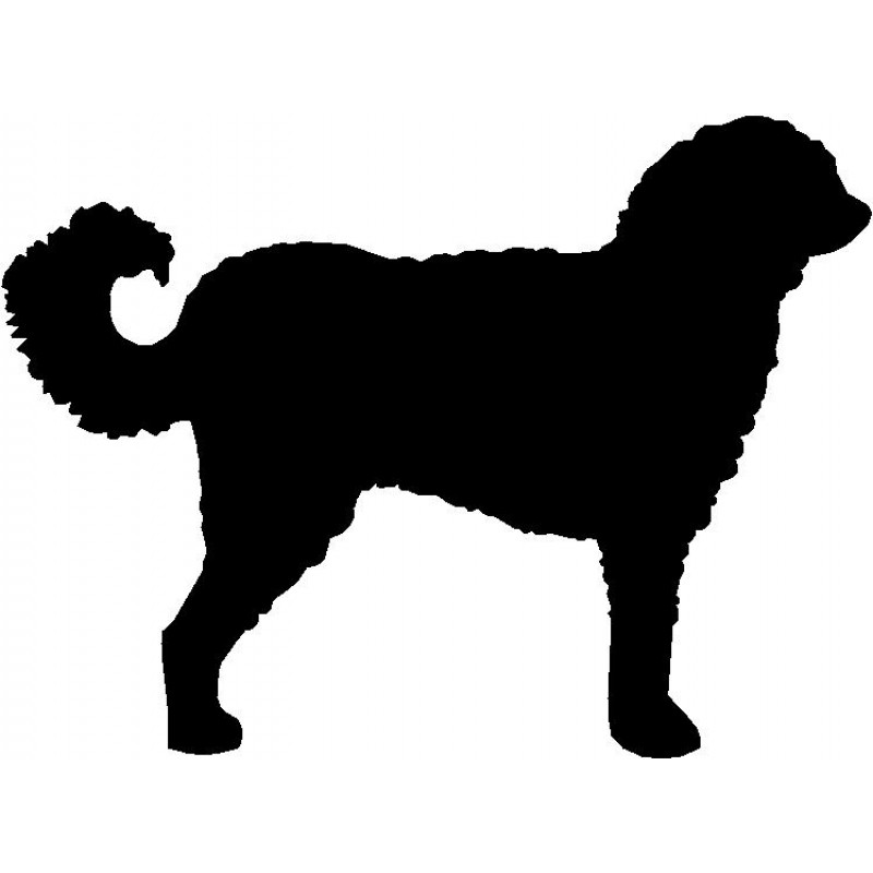 800x800 Dog Breed Silhouette Wall Hanging Magnetic Memo Labradoodle