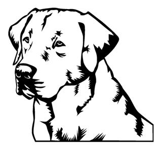 320x293 Labrador Head Decal Sticker