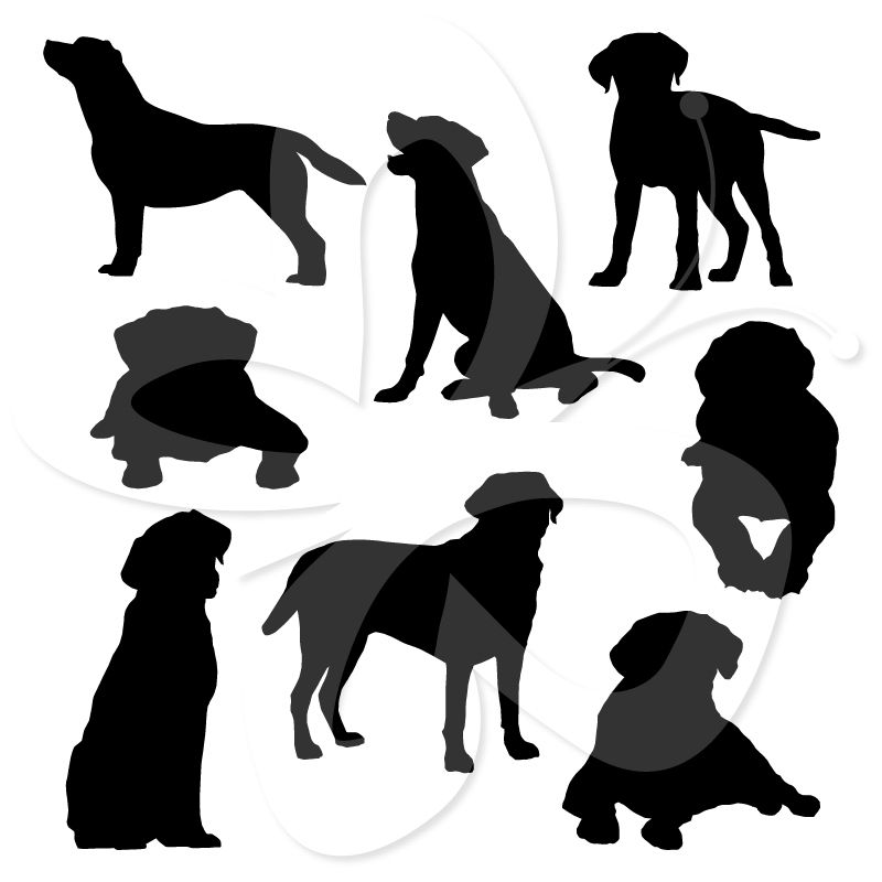 800x800 Labrador Silhouettes Clip Art Wood Carvings And Patterns