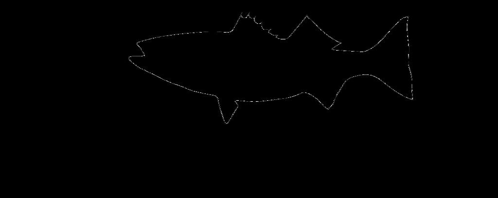 1024x407 State Silhouette Striper Stickers Smith Mountain Lake Fishing Forums