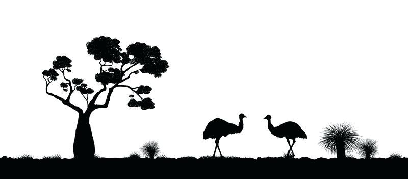 800x351 Landscape Silhouette Black And White Skyline Detailed Silhouette
