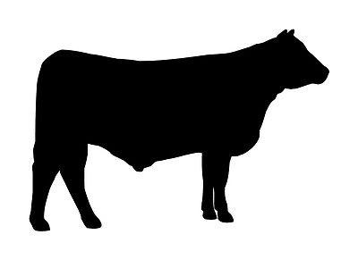 400x291 Angus Cow Cattle Decal Vinyl Sticker Car Van Laptop Silhouette