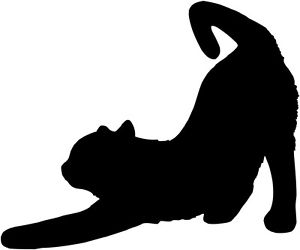 300x250 Cat Stretching Decal Vinyl Sticker Car Van Laptop Bin Sign