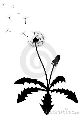 318x450 Dandelion Leaf Clipart