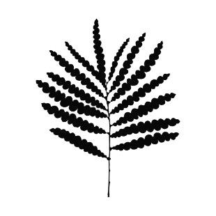 310x310 Fern Leaf Silhouette Plants Decals, Decal Sticker