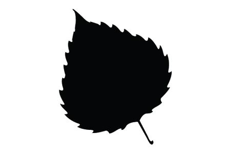 480x309 Leaf Silhouette Vectors Silhouettes Vector