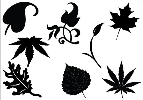 502x351 Clip Art Silhouette Leaf Leaf Silhouette Clip Art Packcategory