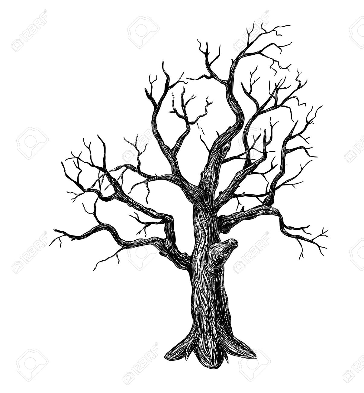 1205x1300 Image Result For Leafless Tree Silhouette Cool Drawing Ideas