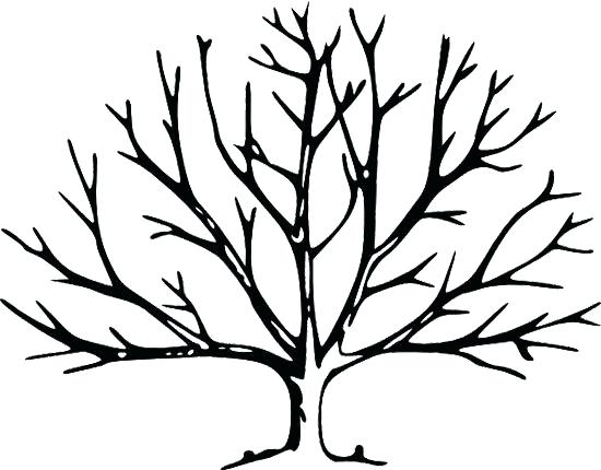550x430 Leafless Tree Silhouette To Paint In The Bathroom And Put Hooks