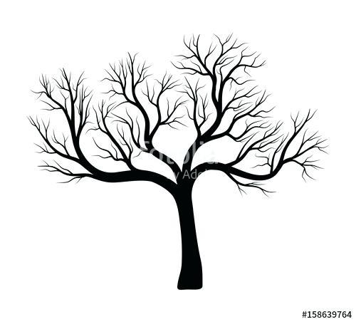 500x452 Bare Tree Outline