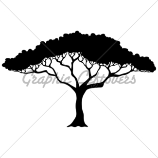 325x325 Leafy Tree Silhouette Gl Stock Images