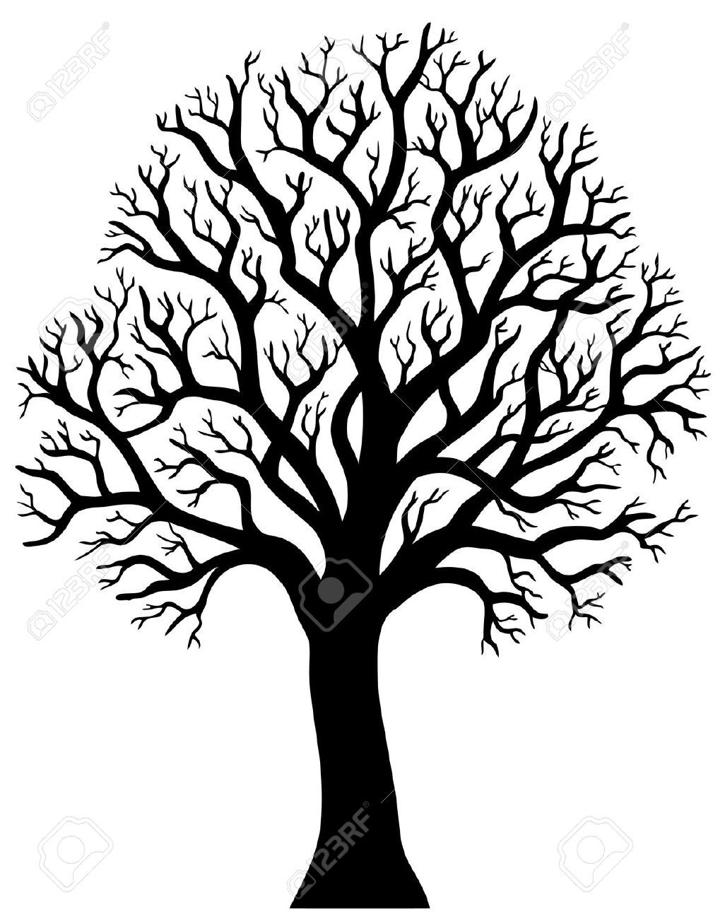 1026x1300 Silhouette Of Tree Without Leaf