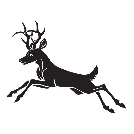 544x544 Deer Temporary Tattoo