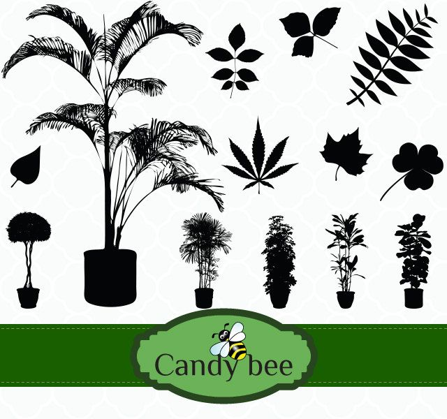 640x600 Plant Amp Leaves Silhouette Digital Clip Art Saj 392 Clip Art