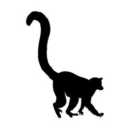 270x270 Lemur Silhouette Stencil Free Stencil Gallery