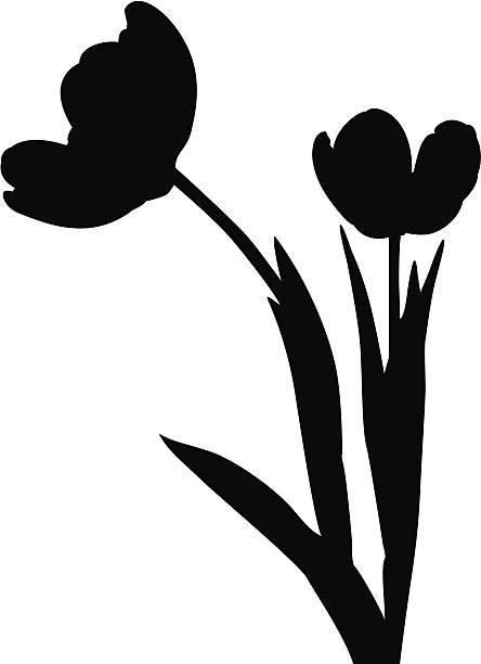 444x612 Tulip Clipart Silhouette