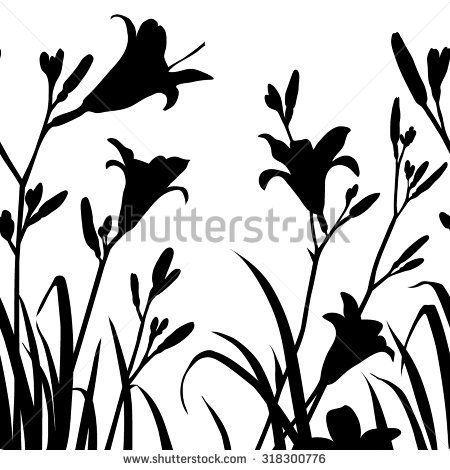 450x470 Lily Lily Searching