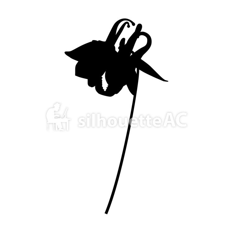 749x750 Free Silhouette Vector Lily, Lily Family, Up