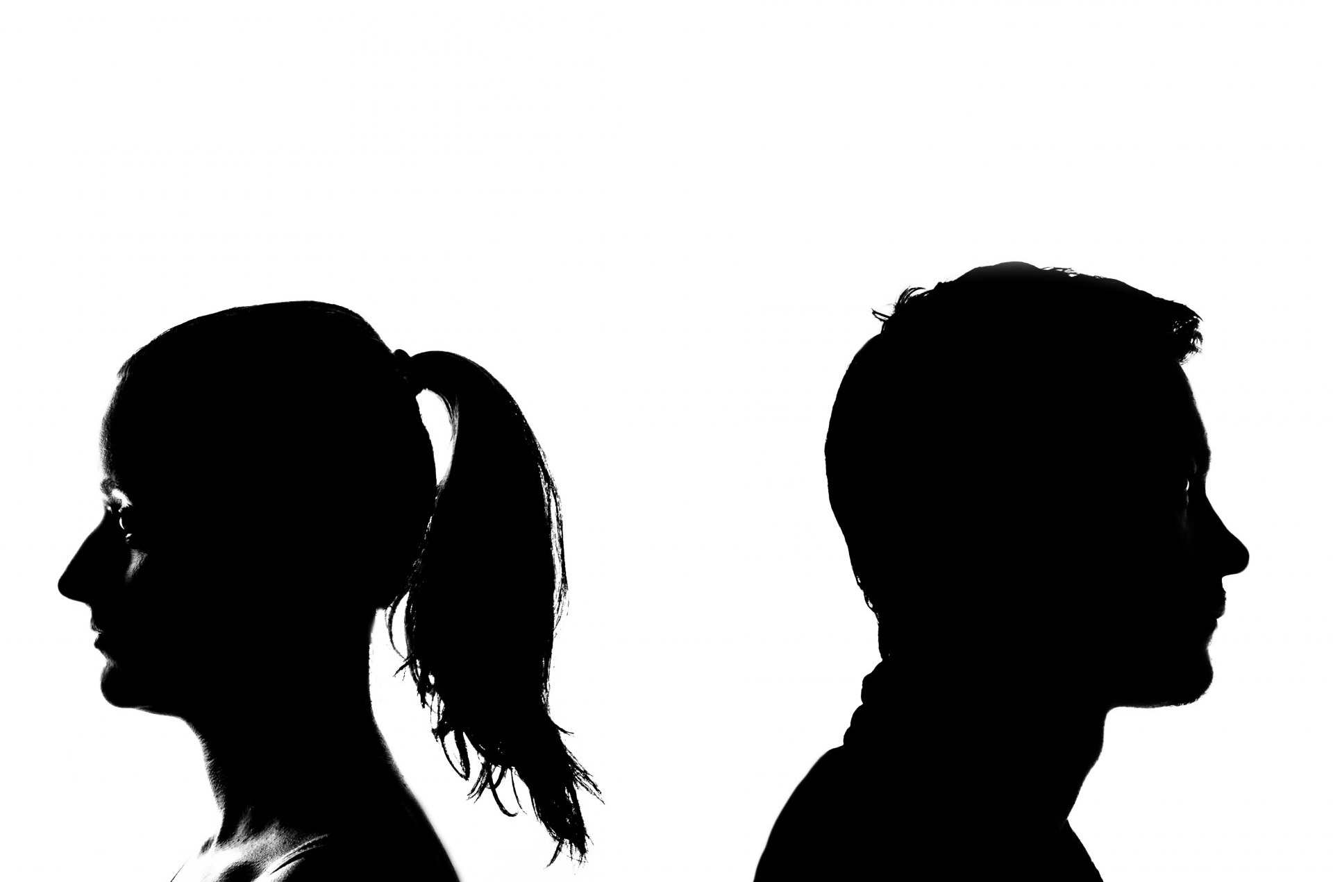 1920x1271 Free Images Hand, Silhouette, Black And White, Marriage