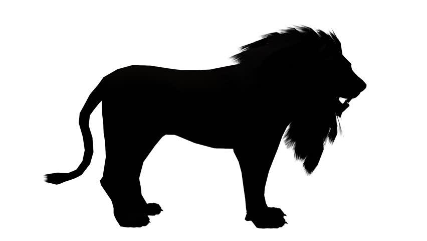 852x480 Lion Looked Around,endangered Wild Animal Wildlife Sketch
